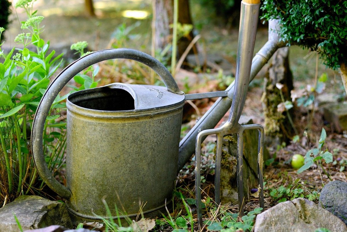 watering-can-3630281_1280